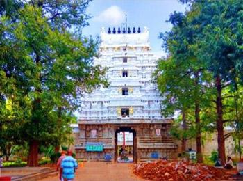 Vedanarayana Swamy Temple