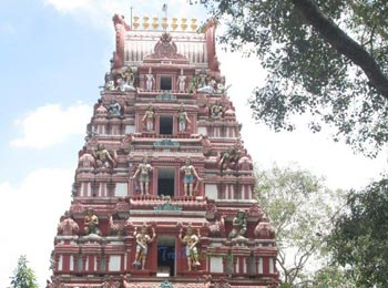 Kadu Malleshwara Temple / Sri Kaadu Mallikarjunaswamy Temple