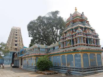 Shree Lakshmi Venkataramana Swamy Temple