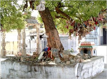 Kamakshi Amman Temple4