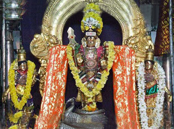 Temples with  identical Muruga Vigraha