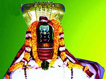 Arulmigu Seshapureeswara Temple