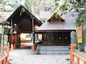 Vetticode Nagaraja Swamy Temple