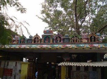 Shiva Vishnu Amman Temple