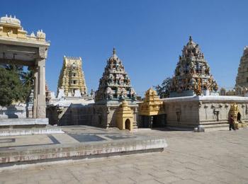 Sri Kadiri Lakshmi Narasimha Swamy Temple