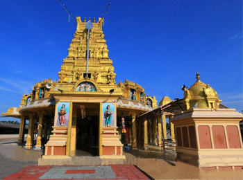 Sri Subramaniar Swamy